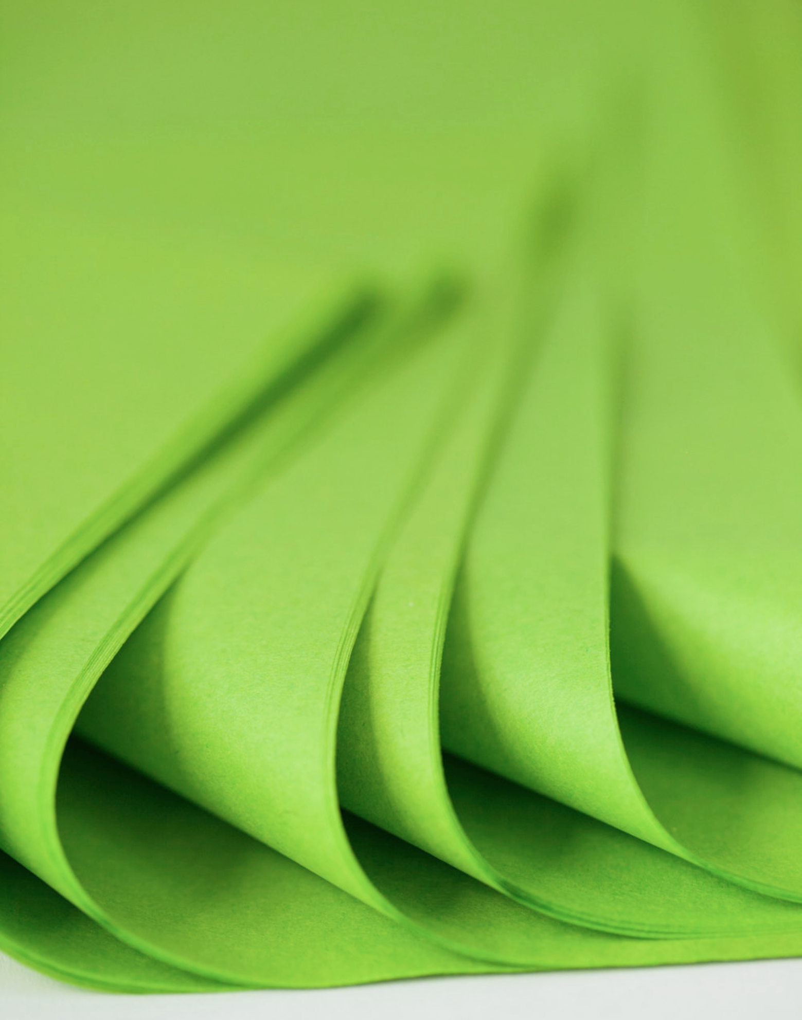 green tissue paper Color flo tissue paper is made from 100% recycled fibers #1 grade usa-mf color tissue paper we guarantee it all our color tissue papers are made with quality, pride and tradition right here in the usa.